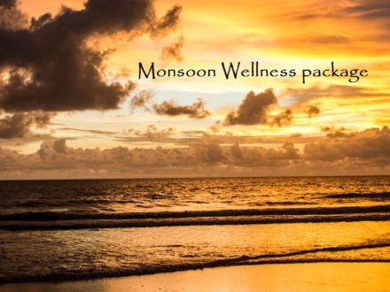 north kerala monsoon package